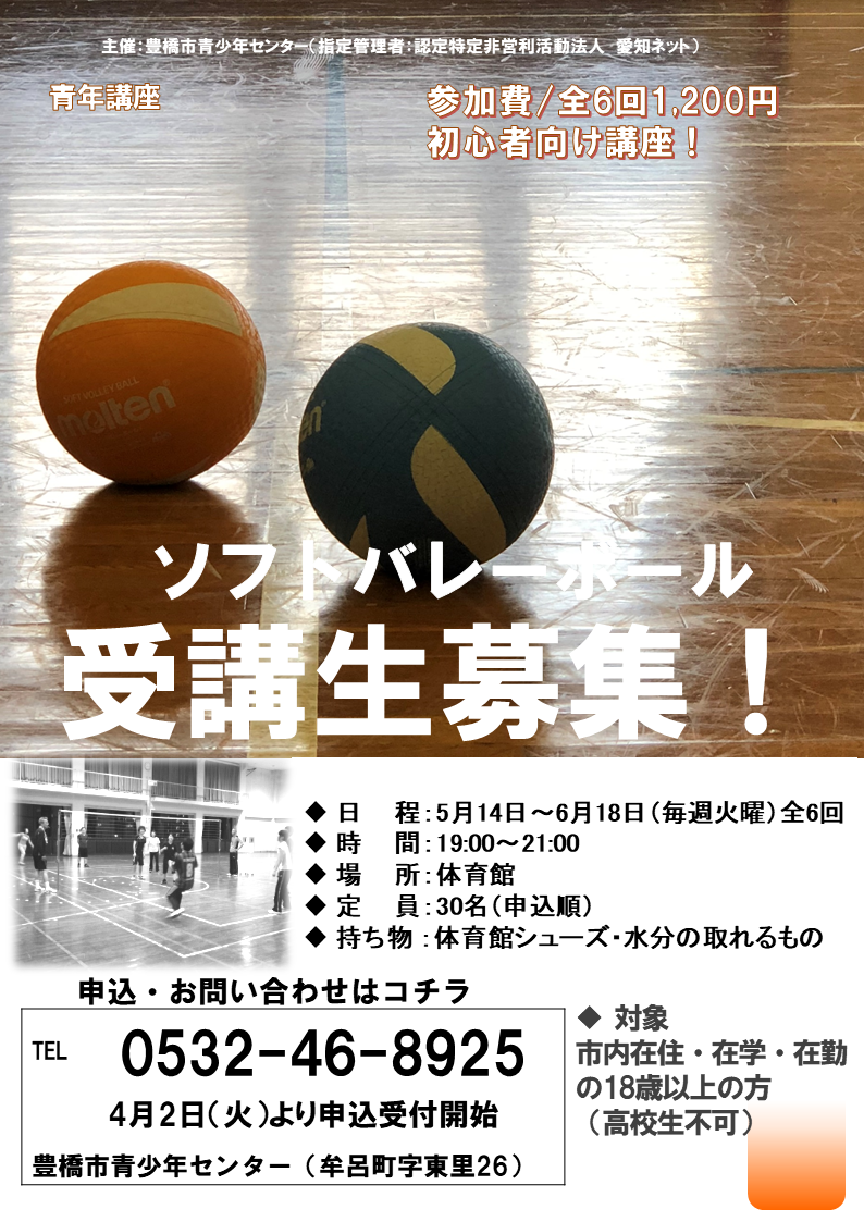 ソフトバレーボールのチラシ